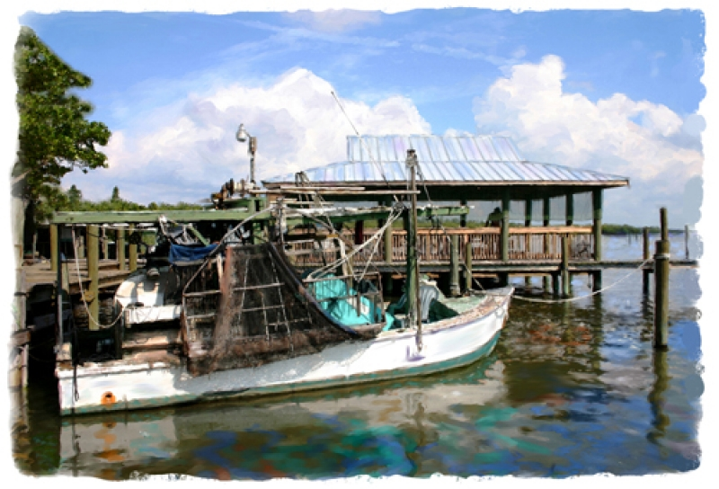 Quot The View Behind Star Cortez Fishing Village Cortez