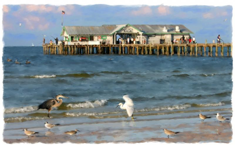 City pier life anna maria island limited editions for Anna maria island fishing